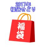 2017年福袋せどりのおすすめはこれだ!